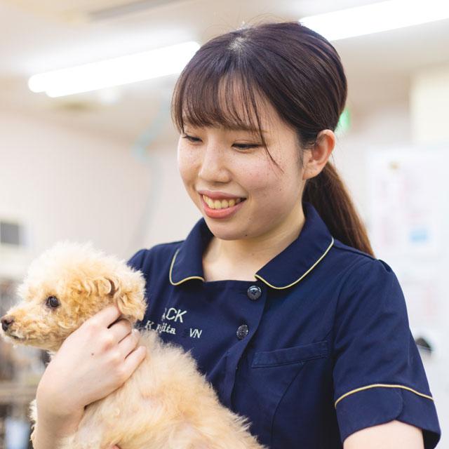 動物看護師:藤田佳那/大宮国際動物専門学校/認定動物看護師