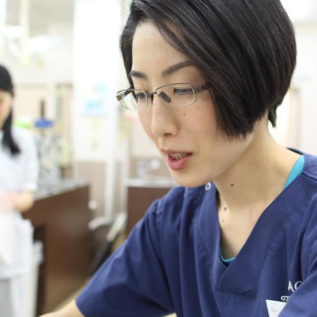 獣医師:菊池加菜子/米国認定鍼灸獣医師