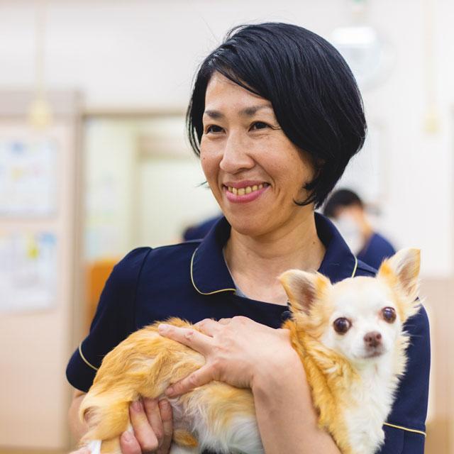 動物看護師:中澤美奈子/高等学校