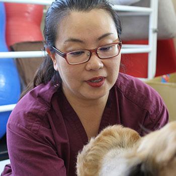 理学療法士:信岡尚子/CCRT(米国CRI認定犬のリハビリテーションセラピスト)